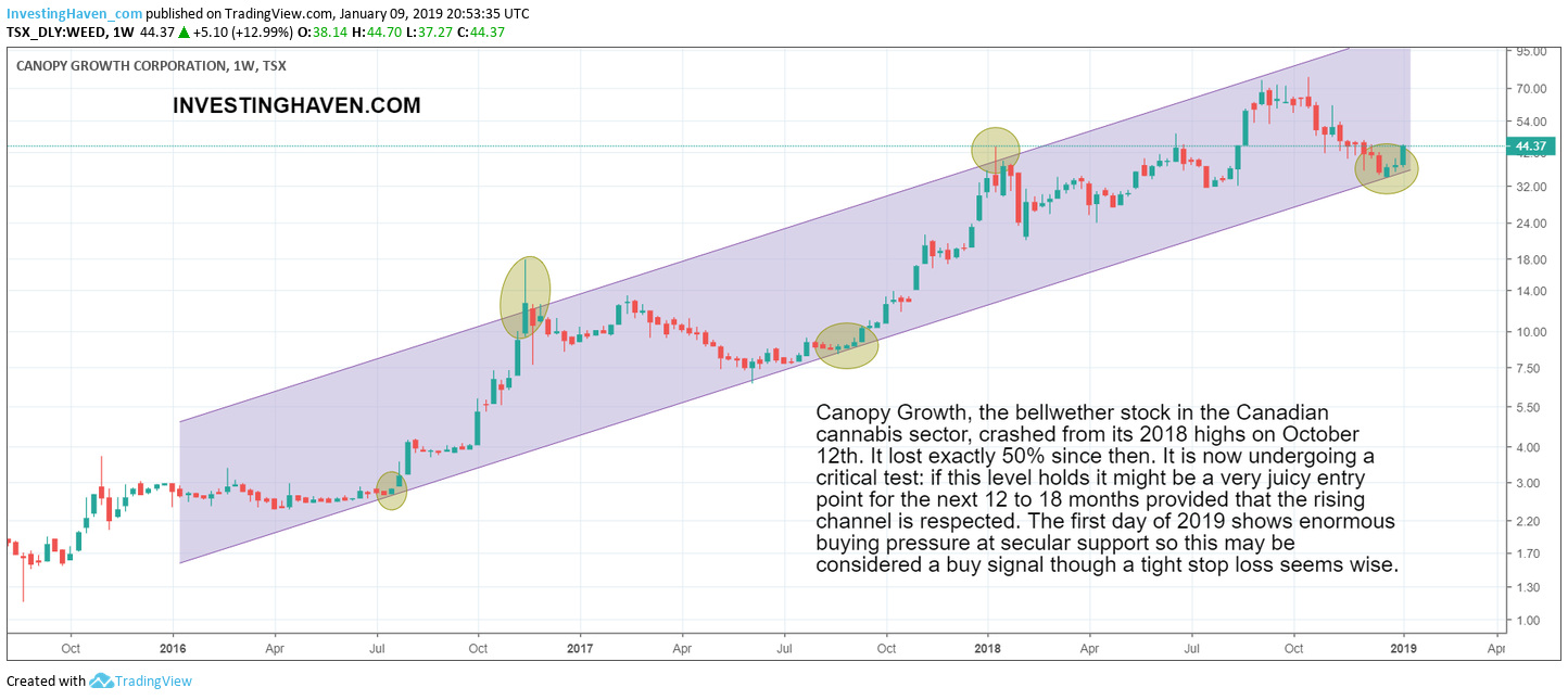 stock tips 2019 WEED