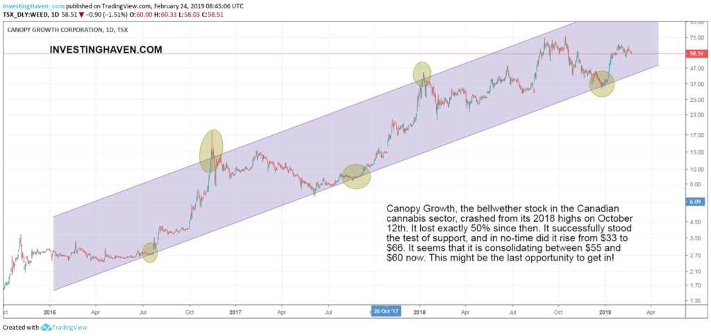 top cannabis stock forecast 2019 2020 WEED